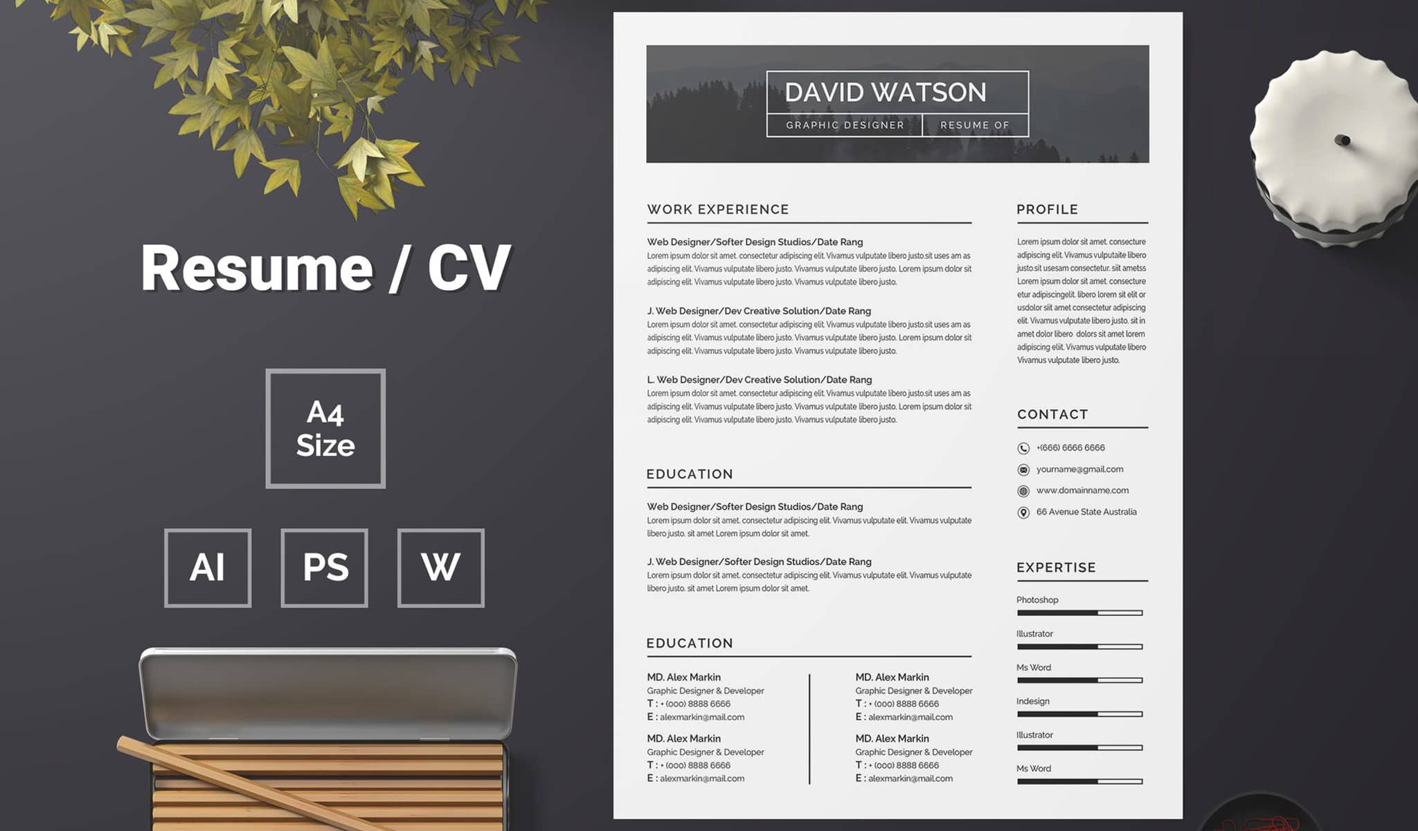 Minimal And Subtle Resume Template
