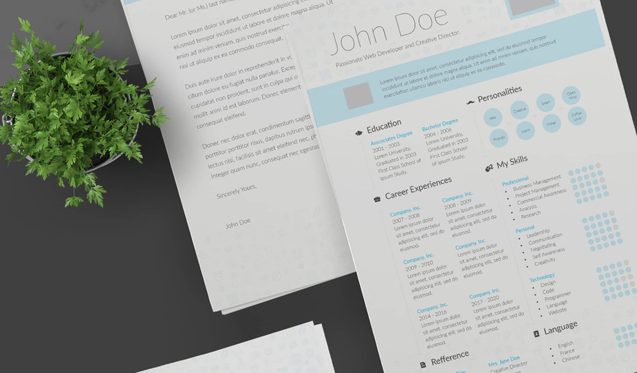 Baby Blue Resume Template