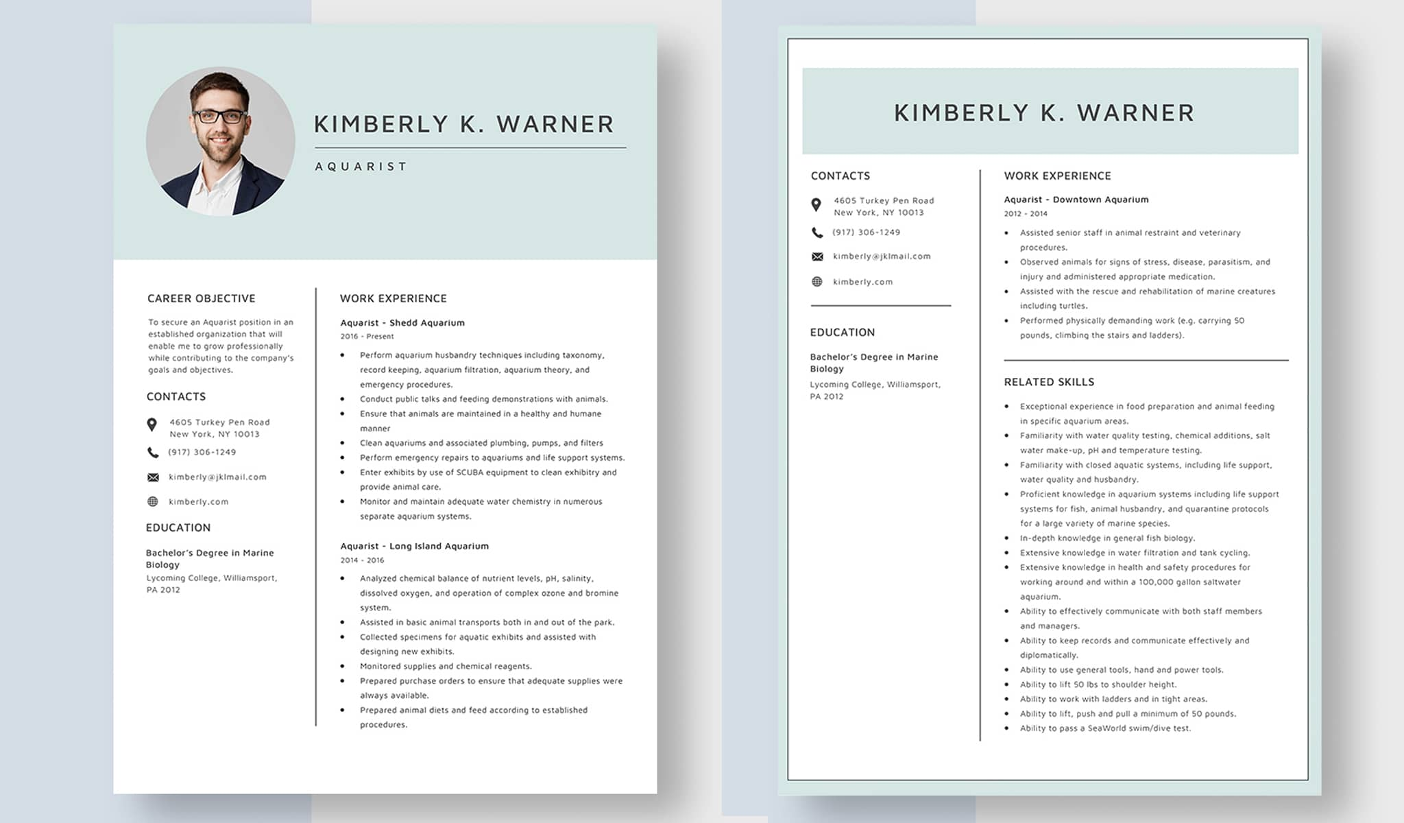 Simple And Attractive Resume Template